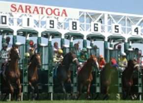 View of Saratoga Race Course Starting Gate