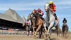 Saratoga race horses stampeding towards the finish line.